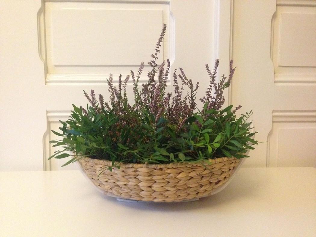 květinová-dekorace-firemních-prostor-klára-uhlířová-floristka-brno